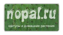 Nopal.ru