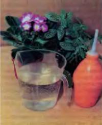Инвентарь для полива и опрыскивания фиалок
