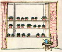 Рис. 11. Монохромная коллекция на окне