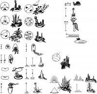 Схемы композиций из суккулентов, разработанные В. Калвой