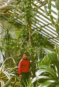 В оранжерее суккулентов Ботанического сада РАН, Санкт-Петербург